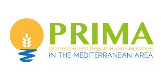 PRIMA – CONCURSOS 2019 ABERTOS