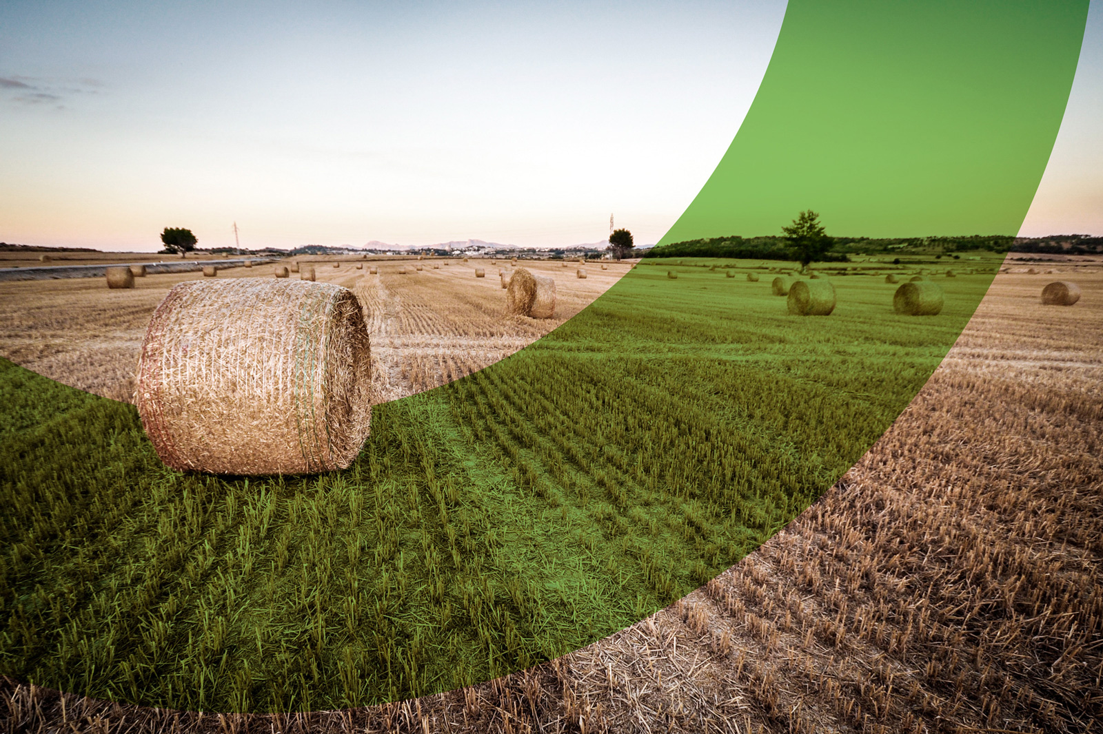 Governo dos Açores apresenta o futuro Living Lab Rural da Região em webinar promovido pela Comissão Europeia