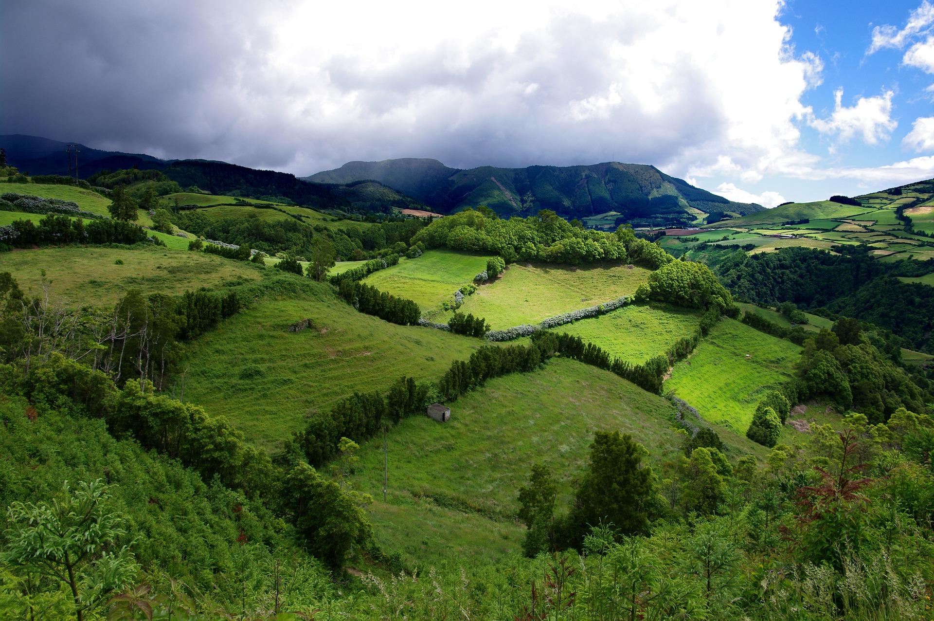Projeto europeu MOVE, coordenado pelos Açores, lança seminários online