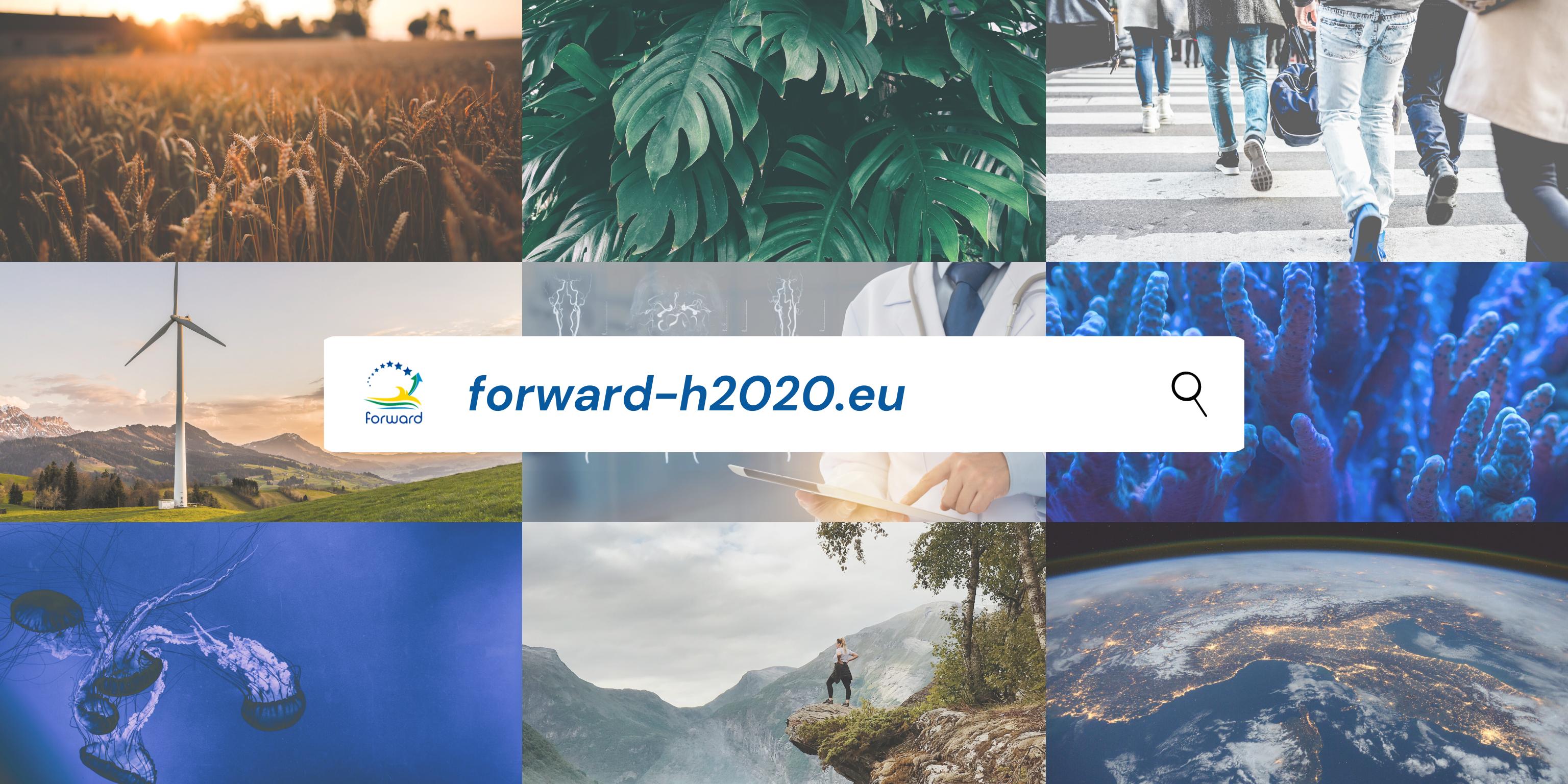 Governo dos Açores promove o arranque de plataformas colaborativas de Inovação e Investigação das Regiões Ultraperiféricas
