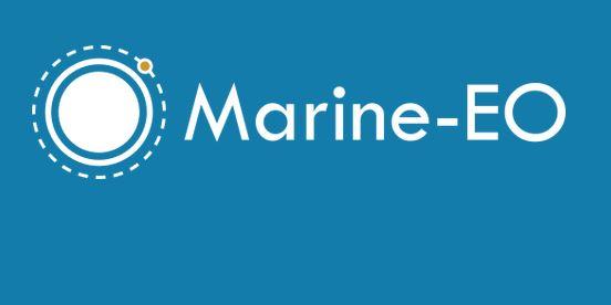 Tecnologia de vigilância marítima com recurso a satélite testada no Banco Condor com sucesso, adianta Gui Menezes